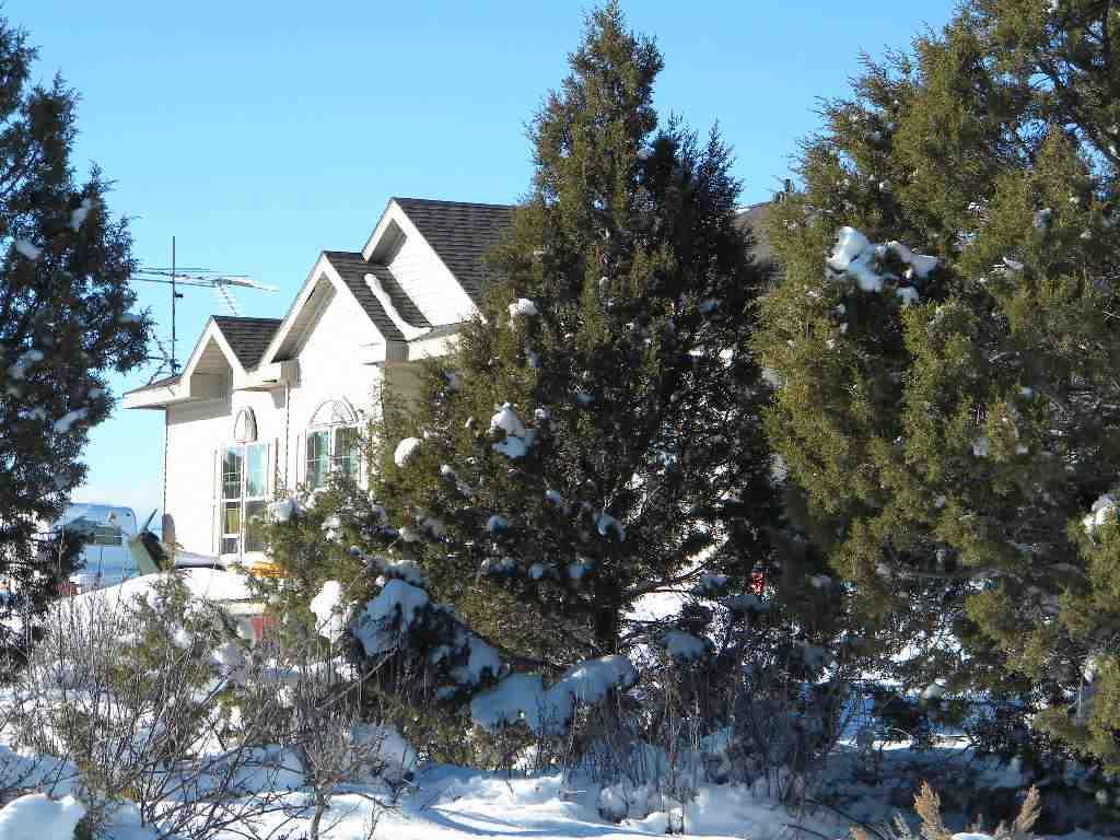 10631 Road 2, Dove Creek, CO 81324