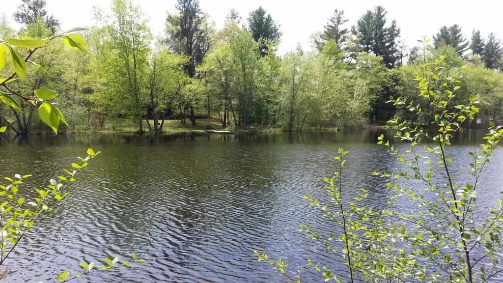 2310  18th Ln, Quincy, WI 53954