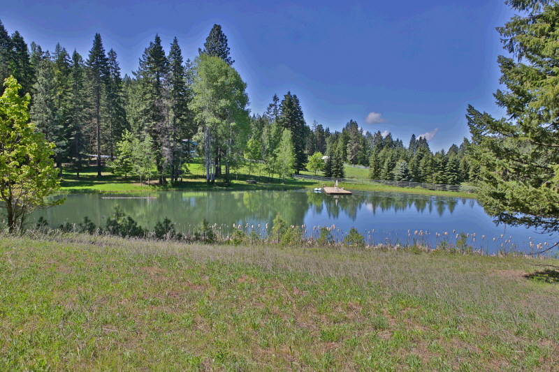 46099 S HIGHWAY 3, St Maries, ID 83861