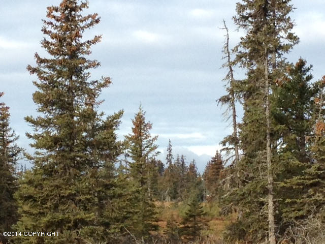 L20A  Opportunity Ln, Anchor Point, AK 99556