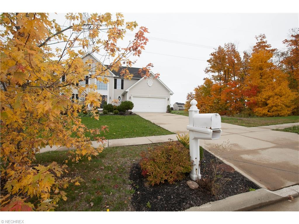 1233  Tinkers Green Dr, Streetsboro, OH 44241