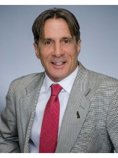 Michael Perrelli - Real Estate Agent