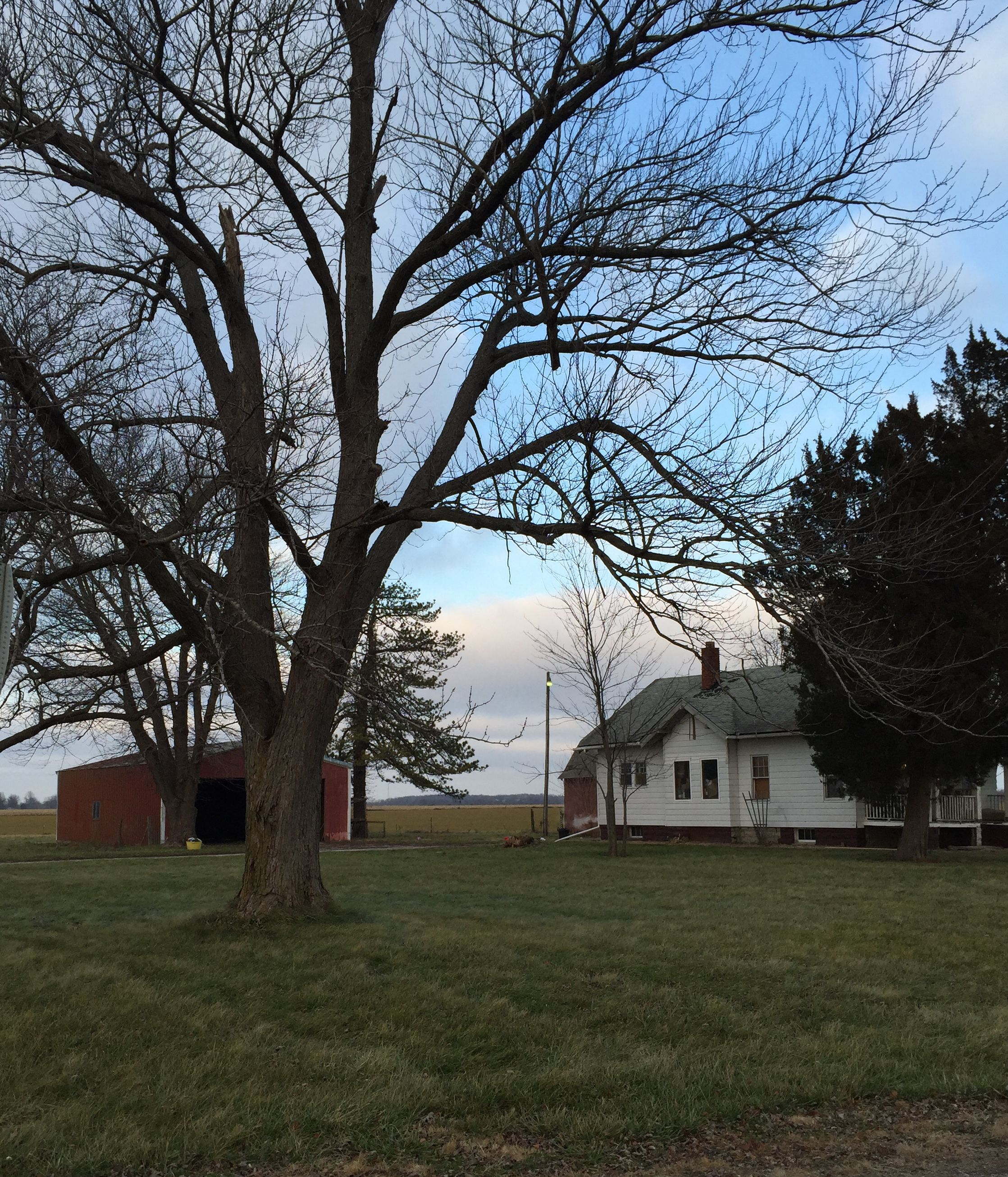 810 E. Oak St., Witt, Illinois 62094