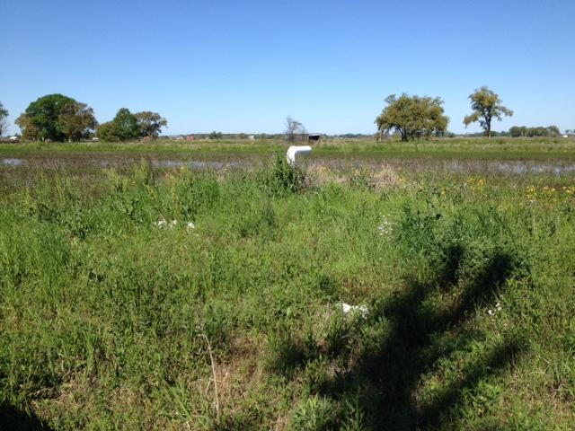 Gallow Road, Opelousas, Louisiana 70570