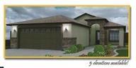 2331 Uribe St , San Luis, Arizona 85349