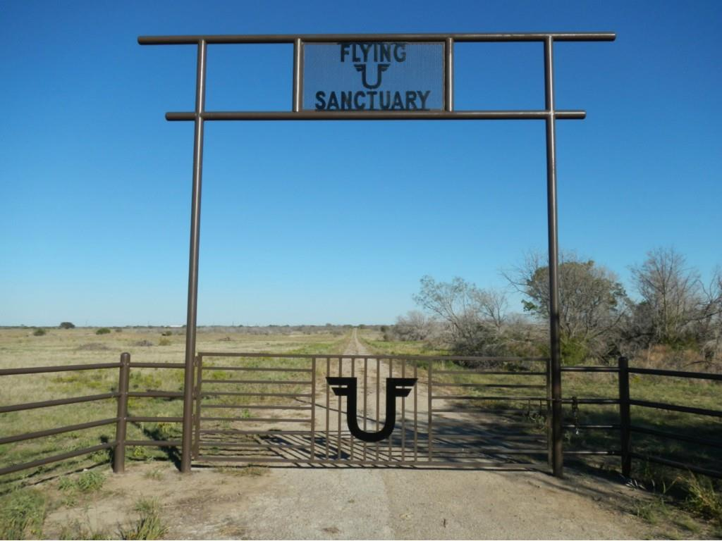 1600 Coyote Trl, Strawn, Texas 76475