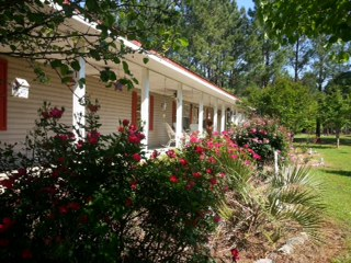 79 Fields Terrace Road, Pinckard, Alabama 36371
