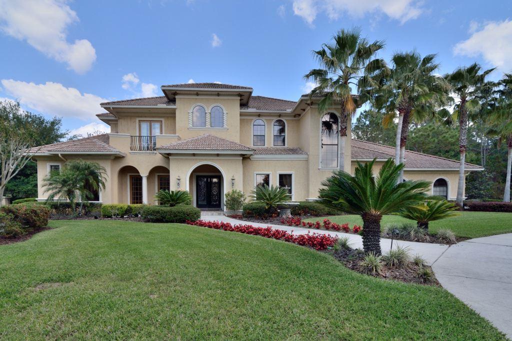 18145 Longwater Run Drive, Tampa, Florida 33647