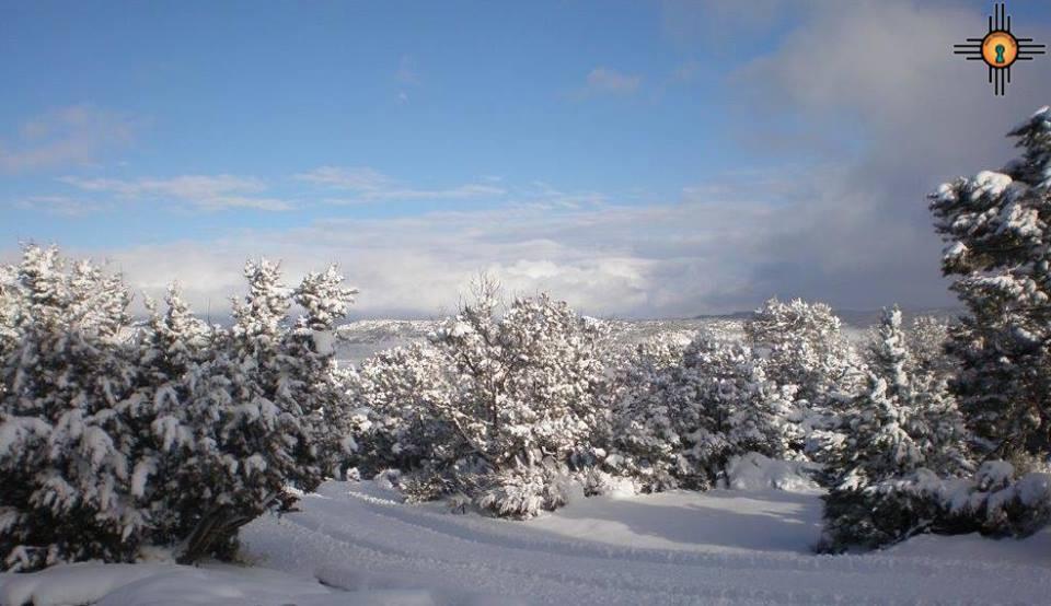 Deer Ridge RD, Gallup, NM 87301